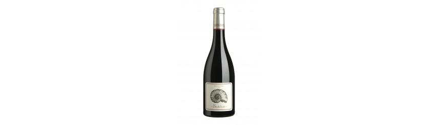 Vin Rouge Languedoc Château Cabezac Grande Cuvée Belvèze 14 Degré 2014 -Cbvs06