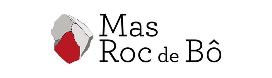Vin Rouge Languedoc Mas Roc De Bô Pépite Noire 14 Degré 2015 -Cbvs15